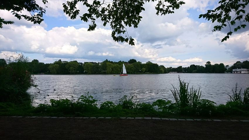 Boat on Alster. Hamburg Germany Hh Alster Außenalster Alster River Alster Boat Boat Sailboat Sailing Water Trees Framed By Trees Outdoors Cloud - Sky Lake Sky Water One Person Lakeshore Reflection