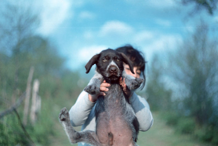 Film Photography Pets Water Portrait Protruding Happiness Dog Friendship Retriever Summer Looking At Camera