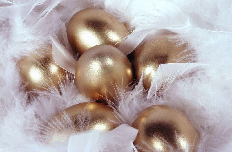Golden Egg Golden Eggs! Savings Savings = $$$ Nest Egg Nest Building Rich