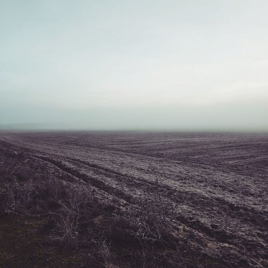 The Mist Outdoor Photography Mist Landscape Horizon Over Water Arid Landscape View Into Land Plowed Field Physical Geography FootPrint Tractor