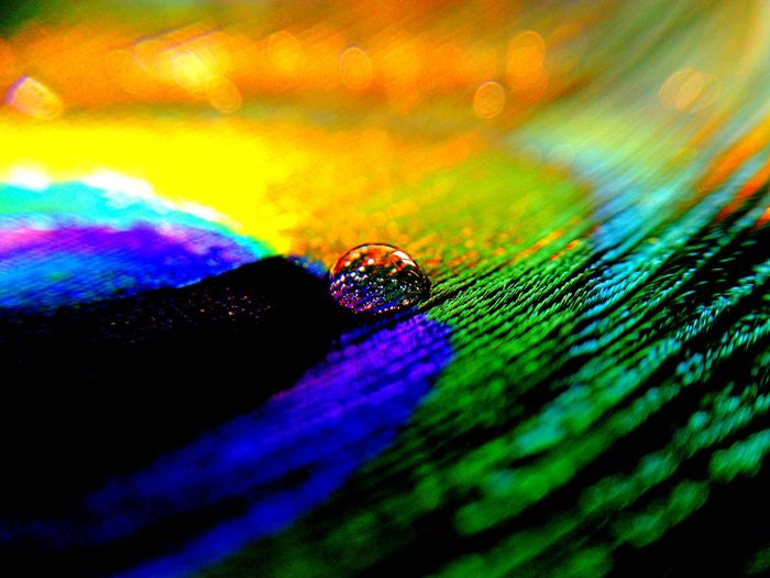 Close-up of multi colored water