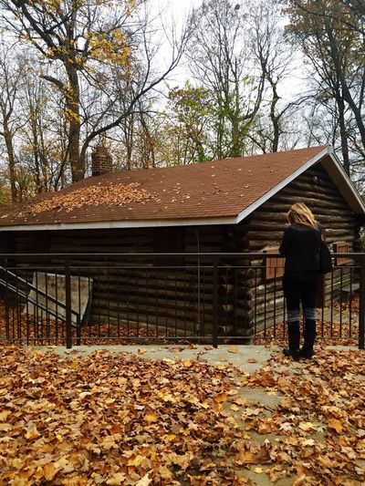 Laura and the log cabin Log Cabin Woods Colors Of Autumn Fall Leaves Cabin In The Woods