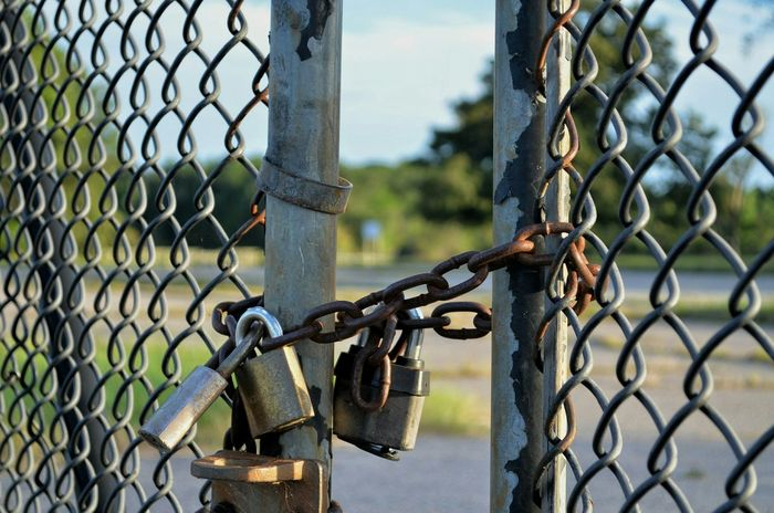 Locked Out Padlocks Fence Sighn Chain Blurry Backyard Eyemphotography Light Salad