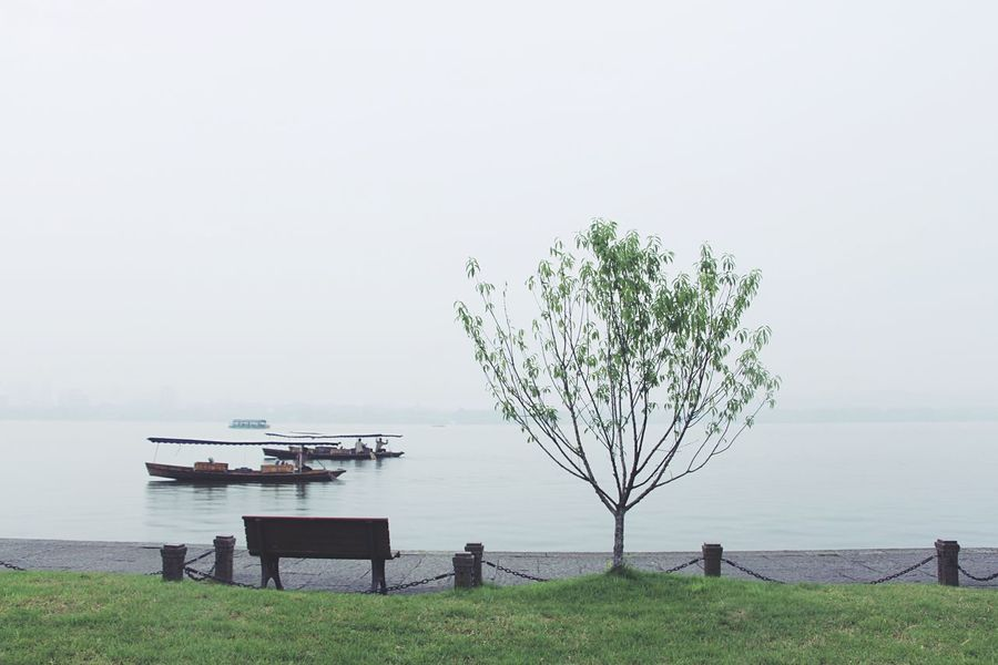 Nature Water Tranquility Beauty In Nature Sea Scenics Tranquil Scene Tree Horizon Over Water No People Clear Sky Grass Outdoors Growth Sky Day Landscape Best Eyeem Pics China Beauty Nature Relaxing Peaceful Atmosphere Of Peace Travel Amazing Beauty EyeEmNewHere