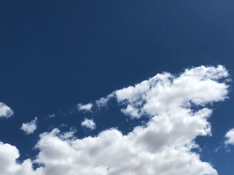 Sunny Sky Cloud - Sky Low Angle View Beauty In Nature Blue Nature No People Scenics - Nature Day Tranquility White Color Backgrounds Outdoors Fluffy Tranquil Scene Idyllic Full Frame Heaven Copy Space Sunlight