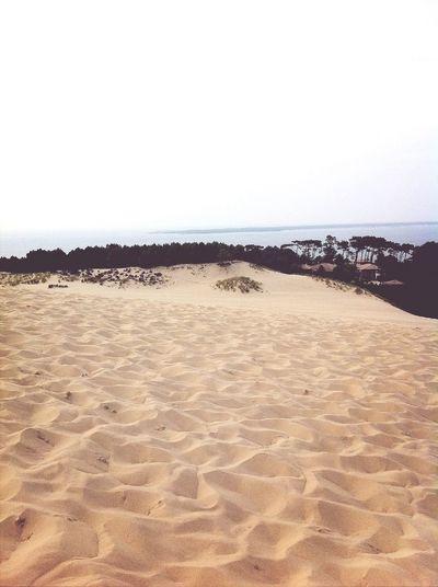 WAOU ? Hello World Paysage Beach Playa