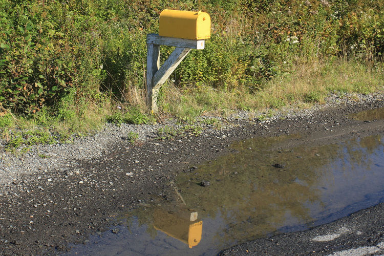 Canada Day Grass Mailbox Nature No People Nova Scotia Outdoors Puddle Reflection Relection On Water Road Water Yellow