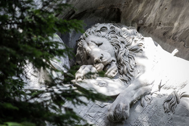 León moribundo Lion Animal Animal Themes Feline Mammal Monument One Animal Sculpture