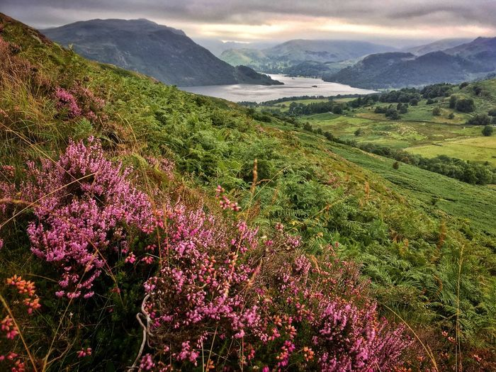 Ullswater Lake District Moors Hill Hills Nature Mountain Mountains Sky Clouds Landscape No People
