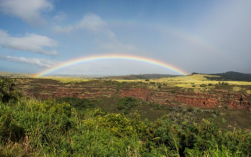 Kaui Hawaii Rainbow Beauty In Nature Scenics - Nature Cloud - Sky Landscape Plant Sky Tranquil Scene Tranquility Environment Double Rainbow Nature Land Non-urban Scene No People Outdoors Growth