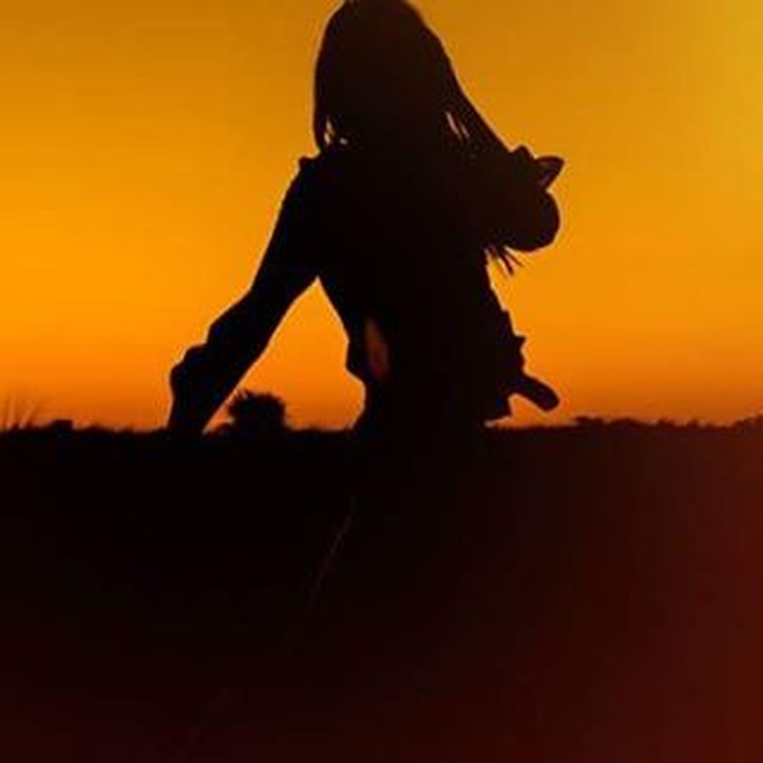 sunset, silhouette, orange color, standing, leisure activity, lifestyles, copy space, beauty in nature, field, side view, nature, sky, three quarter length, outdoors, tranquility, landscape, full length, person