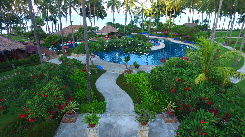 Holiday Resort Poolside Tropical Climate