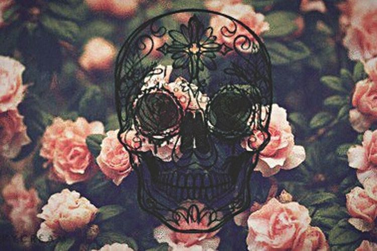 Mexican Skull Roses🌹 Tumblr Style. Multi Colored No People Flower Nature Design Art Close-up Freshness Dreamer Day