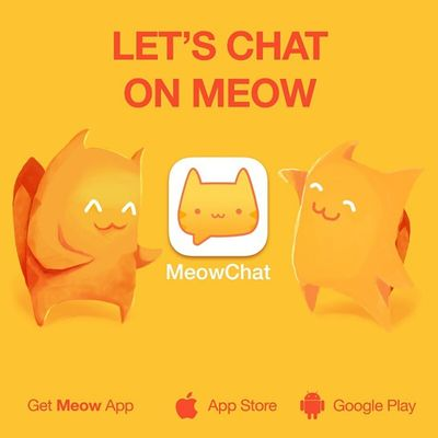 Got a new baby! My newest favorite! Let's chat on Meow: maagiieee Get the App here: @MeowApp or http://meow.me/?app Meowchat