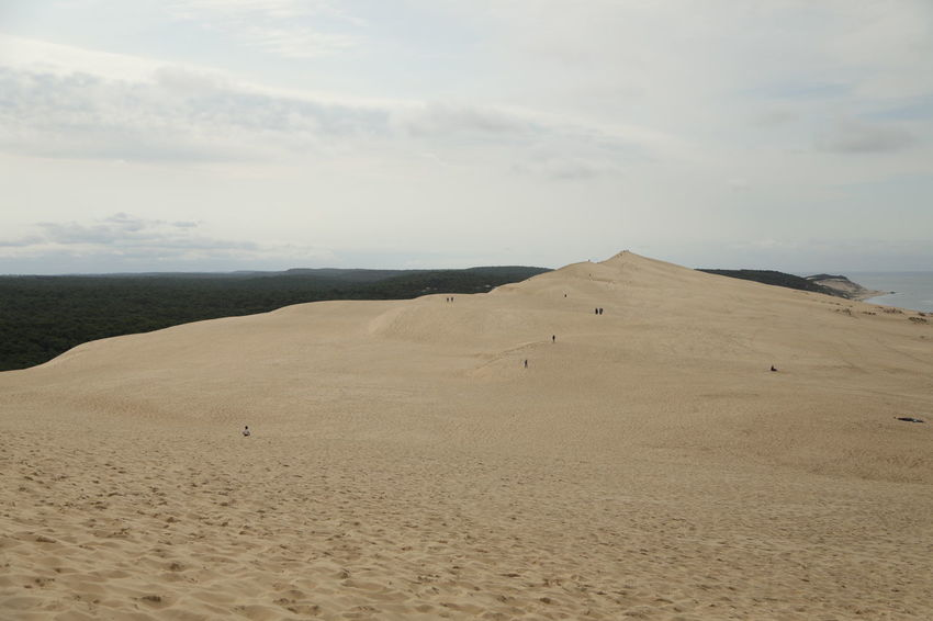 Lost In The Landscape Nature Beuty Of Nature Dune Du Pyla Landscape Sand Sand Dune Sky
