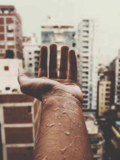 Cropped image of person hand with city