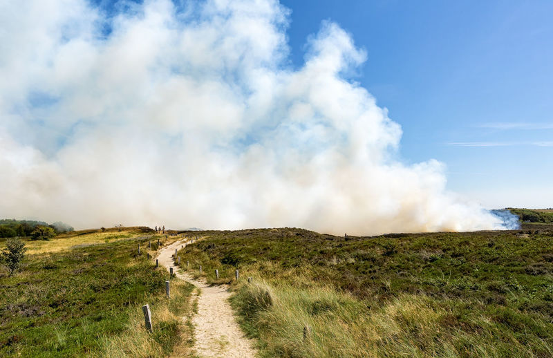 Controlled burning of old and dry heather at Morsum Cliff, Germany. The process of burning small areas removes the older growth and allows the plants to regenerate Burning Deutschland Feuer Heidelandschaft Morsum Cliff, Sylt Morsum-Kliff Smoke Sylt, Germany Day Environment Heather Heide Landscape Nature Outdoors Rauch Smoke - Physical Structure Sylt