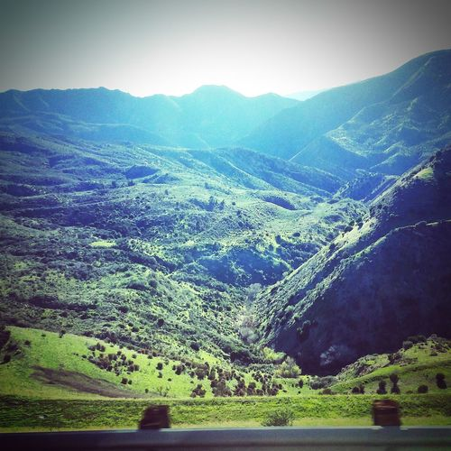 Grapevine Going North California Mountains Photography Land Of The Free Art Enjoying The View Travel Randomshot