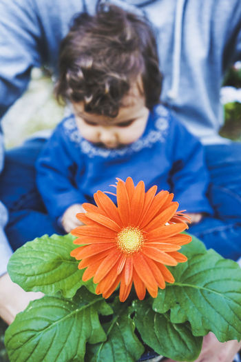 Close-up of boy holding flowering plant