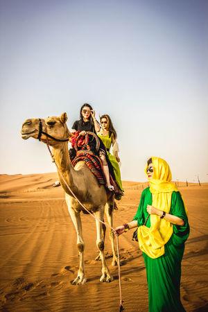 Animal Themes Desert Dubai Enjoyment Outdoors Togetherness Tourism