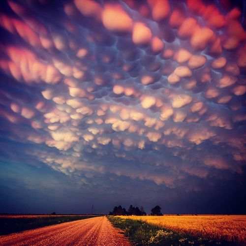 In the most quaint of settings, nature shows it's magic. Travel Vacation Nature Sky weather clouds cloudporn skylovers skypainters mothernature ladd00 scenery crazyclouds mammatus msp minnesota mn twincities roadtrip