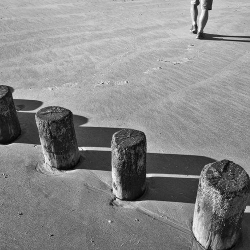 On the Beach Sunshine Beach Zeeland Walcheren