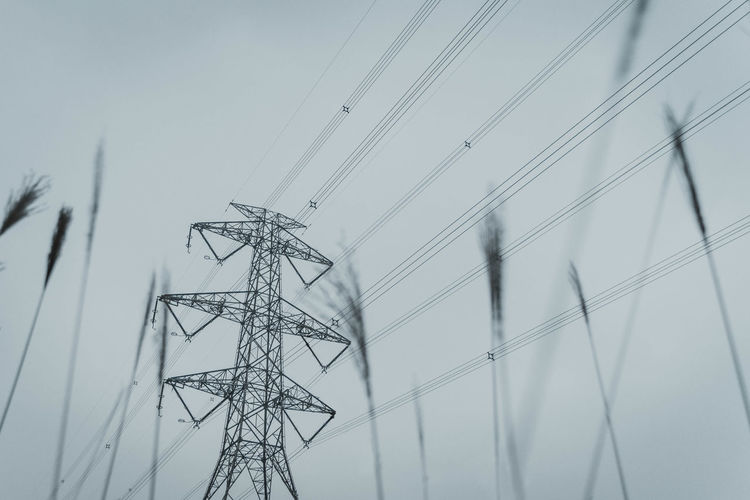 Electricity Pylon Power Line  Technology Connection Cable Low Angle View Electricity  Fuel And Power Generation Power Supply Sky Nature No People Tall - High Day Outdoors Metal Wire Plant Complexity Built Structure Electrical Component