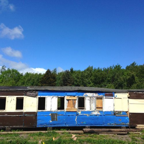 Abandoned train Trainphotography Train Tree Beehive Blue Day APIculture Multi Colored Sky