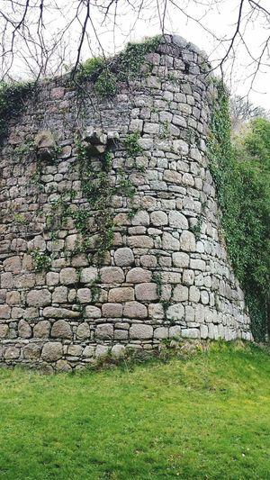 Irish wall, Lough Rynn 01 Lough Rynn