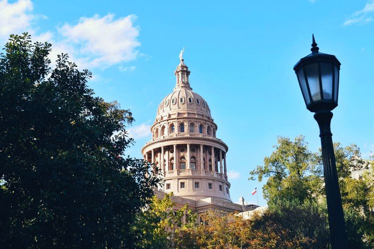 Texas state capitol Tree Architecture Dome Built Structure Capitol Capitolio Texas Austin Building Exterior Low Angle View Growth City The City Light