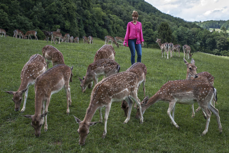 Woman walking by deer on grassy field
