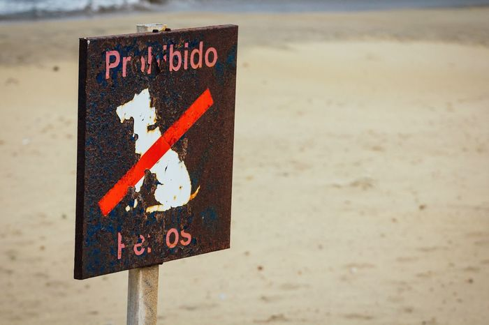 Forbidden dogs! Forbidden Beach Cabo De Gata Forbidden Area Nature Textures And Surfaces Prohibited Warning Sign Sign Old Signs Dog EyeEm Best Shots Getting Inspired Open Edit