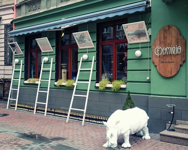 Restaurant Cafe ресторан  кафе Україна львів Rhino Lovely Architecture Arkitektur Architecturelovers Architectureporn Lviv