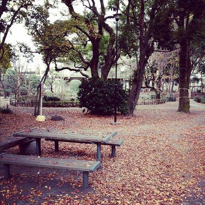 鹿児島大学で目についた風景