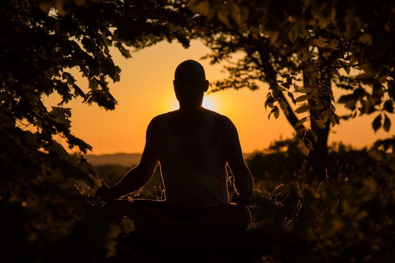 Man Meditating Amidst Trees During Sunset