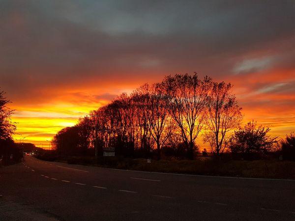 No Edit/no Filter Sunset Sky Tranquility Tree Sky On Fire
