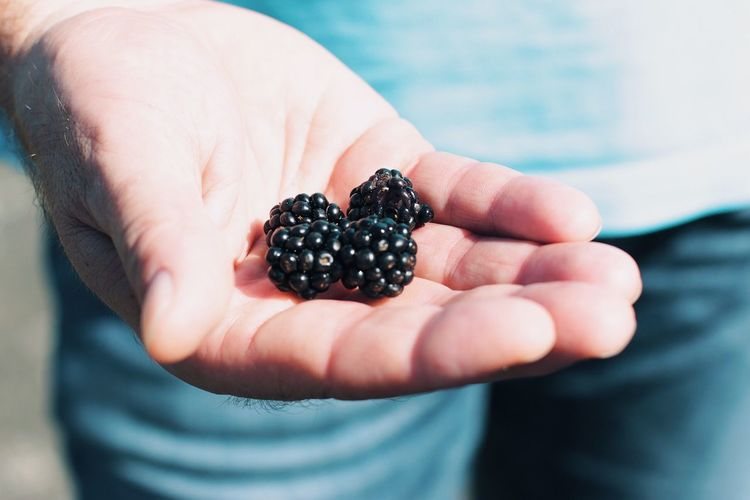 Human Hand Holding Berries