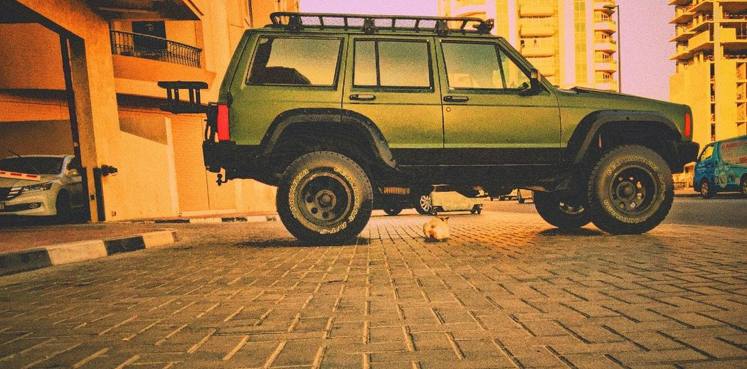 4x4life Parking Tire Outdoors Beauty In Nature Landscape