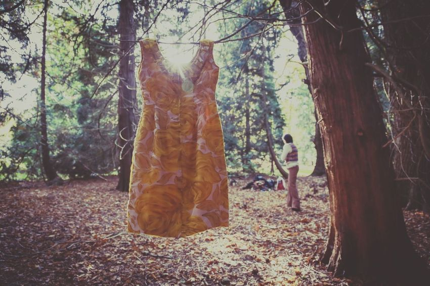 Dress Situation Art Forest Fashion Photography Woman Autumn Nature_collection Destiny Trees Yellow Dress