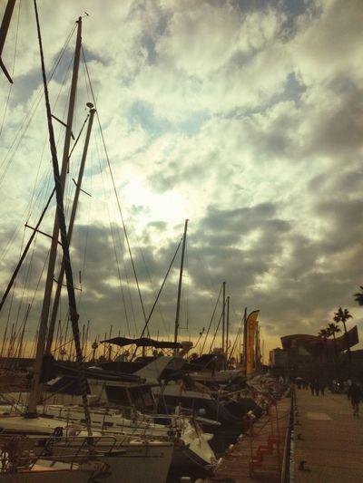 🚤 Nautical