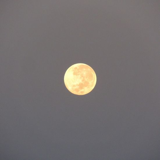 Good Morning Moon Moon Beautiful Moon  Moon_of_the_day Full Moon In The Morning Moon Surface Moon Shots Moon_collection Moonphotography Capture The Moment