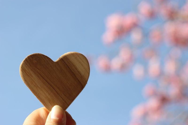 Close-up of hand holding heart shape wood against sky