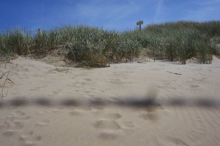 Dune behind