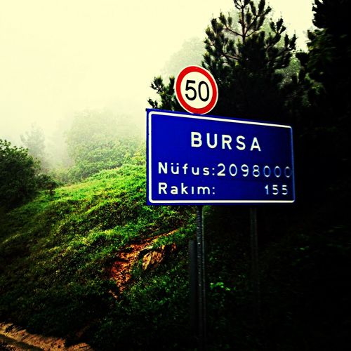Green Bursa Yolu Rakim