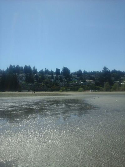 Beach neighborhood. Must be Real nice living so close to the beach huh.