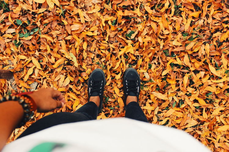 Low Section Of Person Standing On Dry Leaves At Field During Autumn
