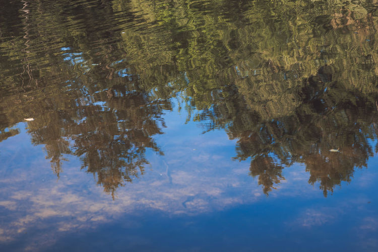 Abstract Beauty In Nature Blue Cloud - Sky Day Growth High Angle View Lake Nature No People Outdoors Plant Reflection Rippled Sky Surface Tranquility Tree Upside Down Water Waterfront