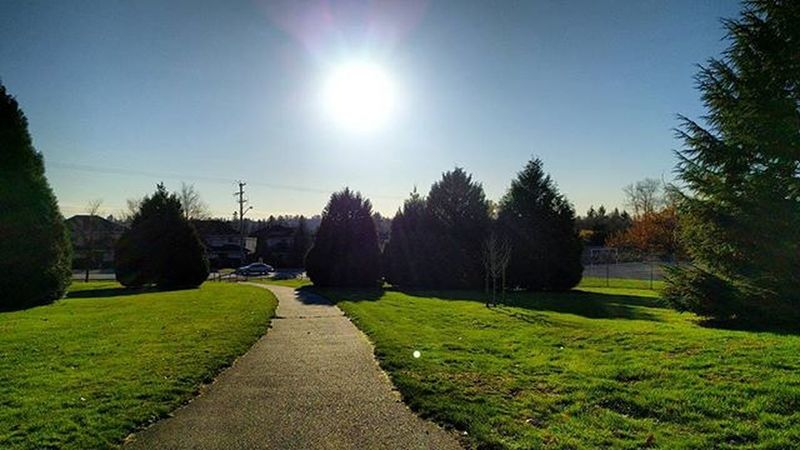 Sunny, cold day! SurreyBC Vancouverisawesome Vancouverbc