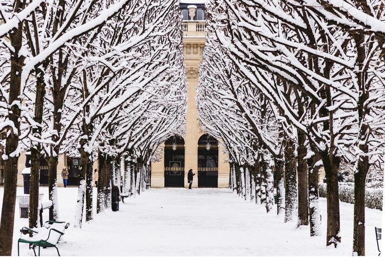 Paris under the