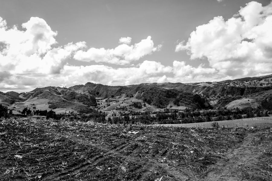 Creation Abandoned Places Boyacá, Colombia Colombia Grass Houses WeekOnEyeEm Animals Blackandwhite Canon Clouds Day Landsacpe Nature No People Outdoors White Wide Angle Perspectives On Nature